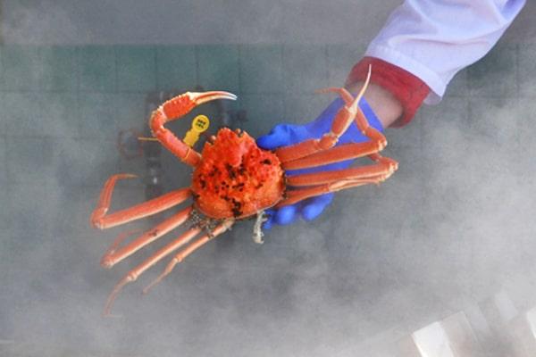 蒸し蟹 1
